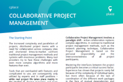 Collaborative Project Management - Paper